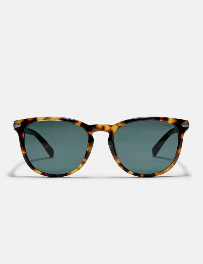 Coach Round Frame Sunglasses Tokyo Tortoise/Green Gifts For Him Under $300 Alternate View 2