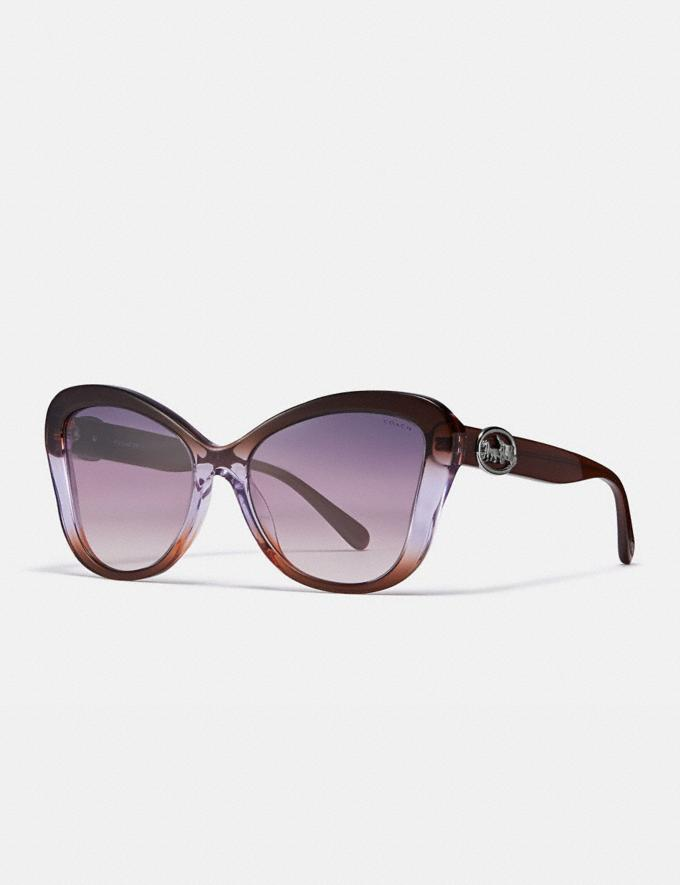 Coach Horse and Carriage Butterfly Sunglasses Brown Purple Gradient Women Accessories Eyewear