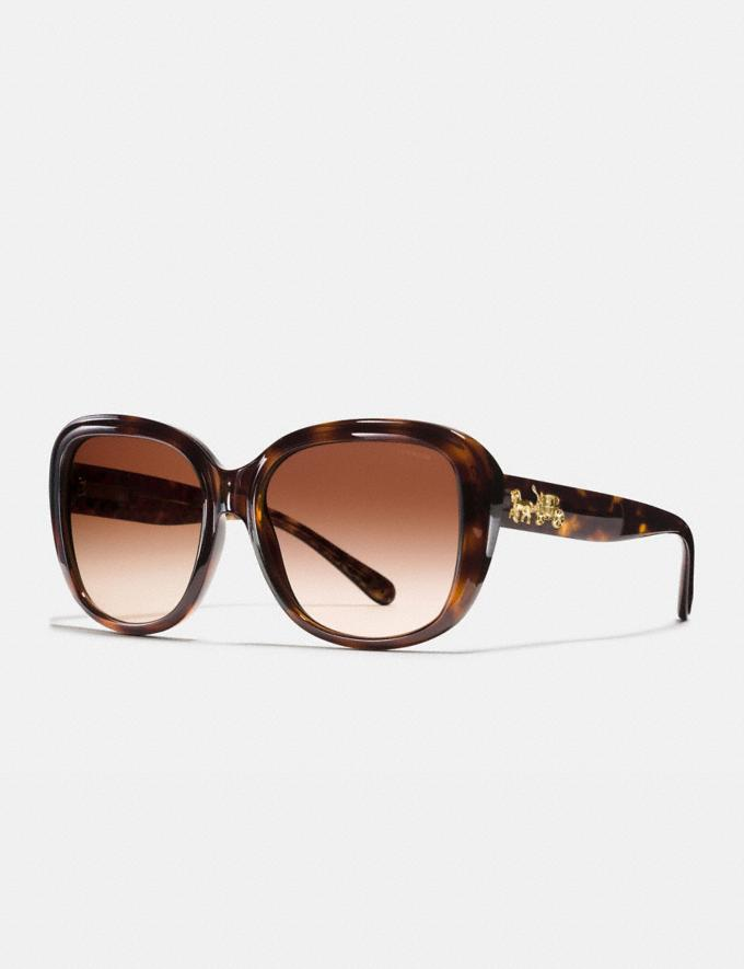 Coach Horse and Carriage Soft Square Sunglasses Dark Tort/Dark Tort Gold Sig C Gifts For Her Luxe Gifts