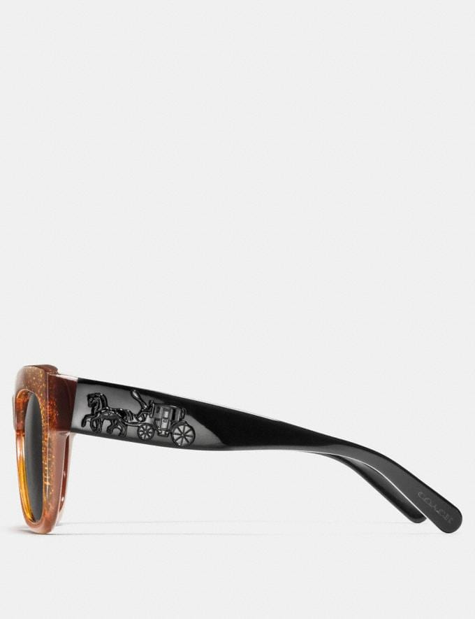 Coach Horse and Carriage Square Sunglasses Amber Saddle Glitter  Alternate View 2
