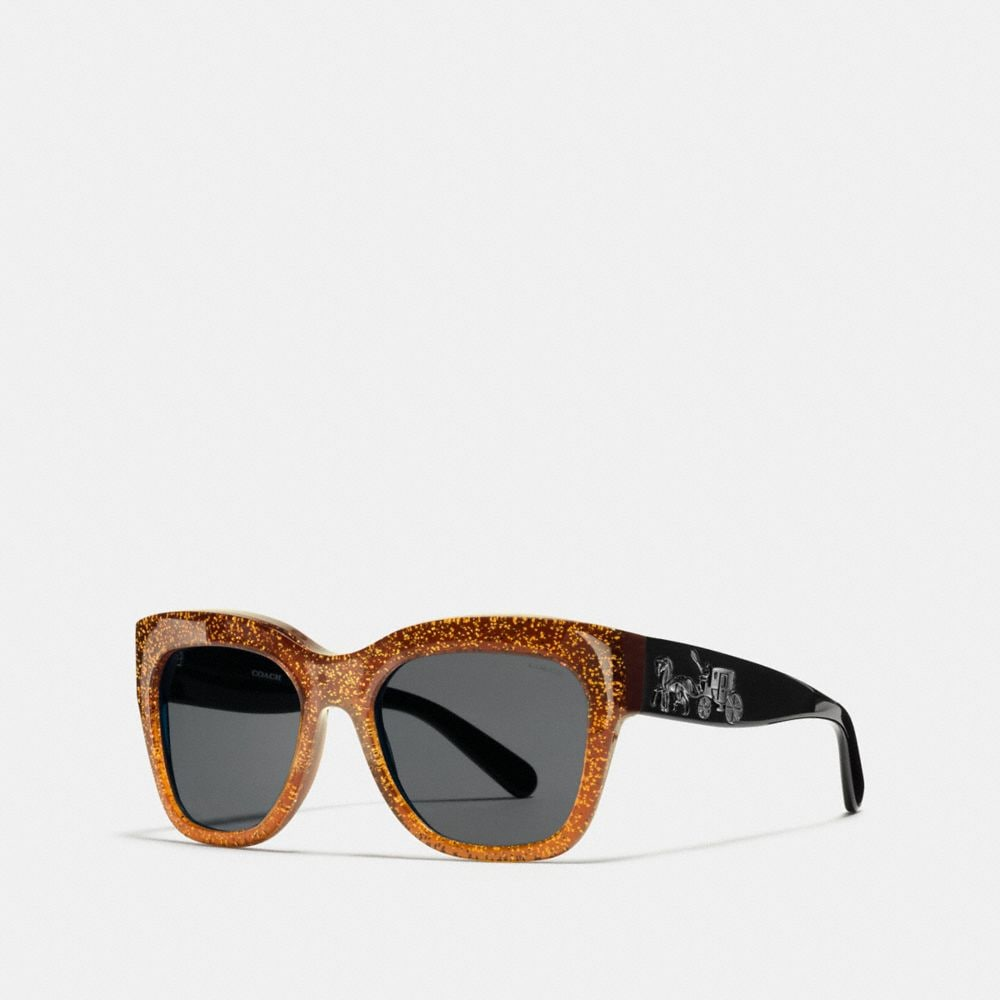 HORSE AND CARRIAGE SQUARE SUNGLASSES - Alternate View