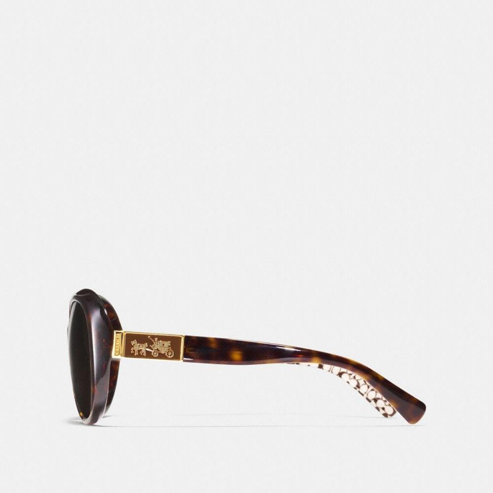 Coach Carter Polarized Sunglasses Alternate View 2