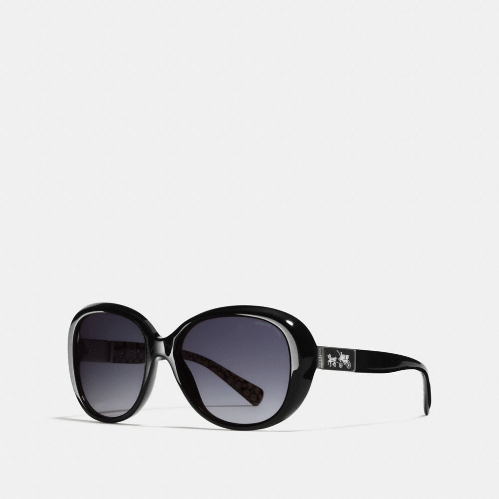 CARTER POLARIZED SUNGLASSES