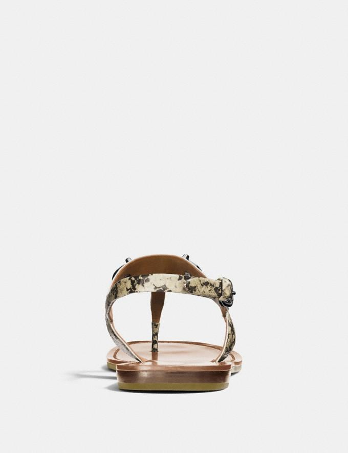 Coach Gracie Swagger Sandal Natural Women Shoes Sandals Alternate View 3
